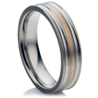 Titanium Ring with Gold