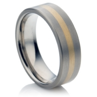 Titanium Ring with Inlay